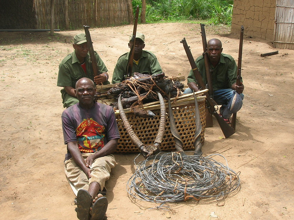african poachers and snares