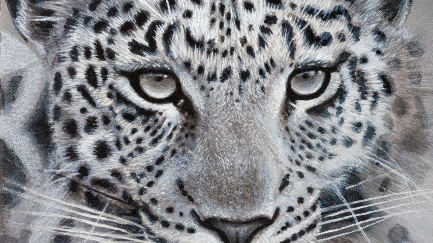 'Leopard' (30 x 21 cm)