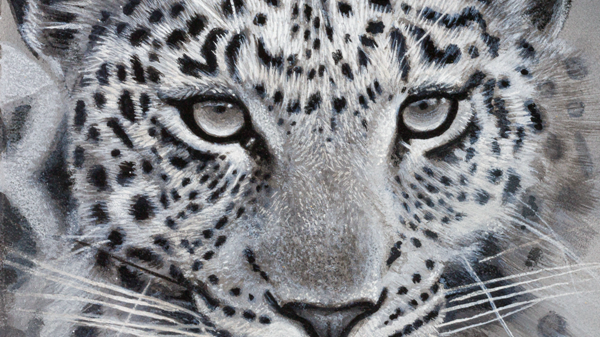 'Leopard' by Anthony Walker (30 x 21 cm)