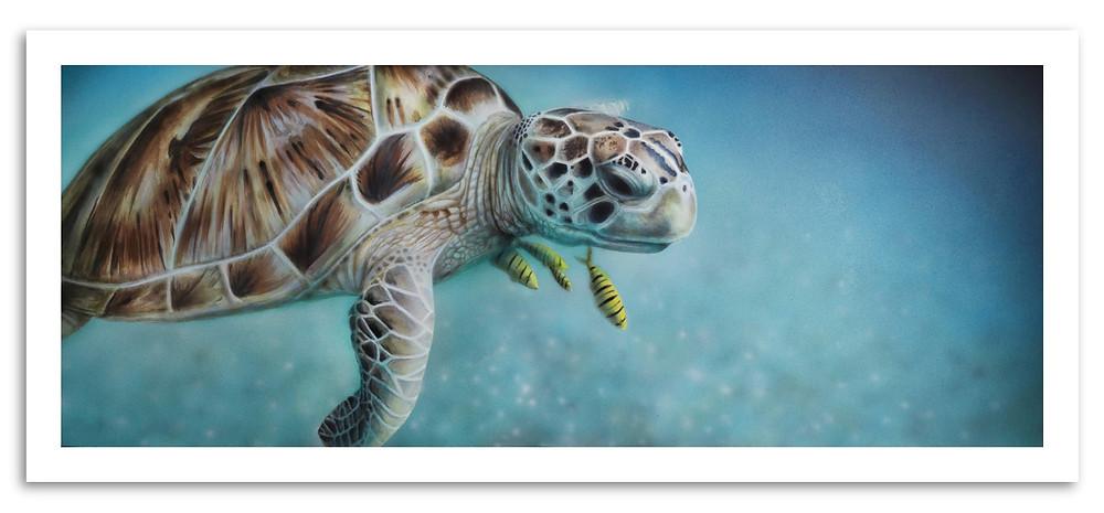 turtle painting print