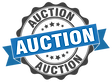 Auction Banner-01.png
