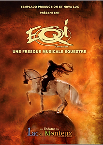 EQI spectacle équestre/ www.herveguinand.com