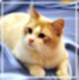 IMG-20180911-WA0007_edited_edited.jpg