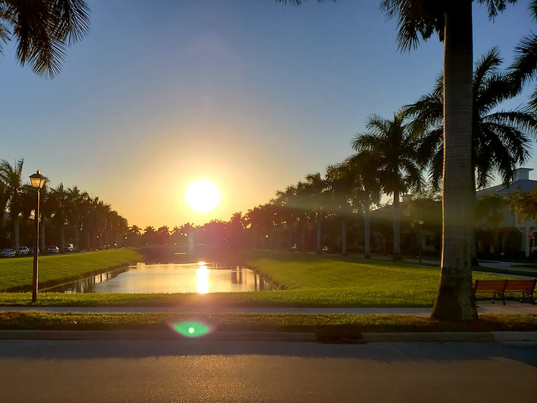 Blue Diamon Pressure Washing and Paver Sealer in jupiter and Palm beach Gardens