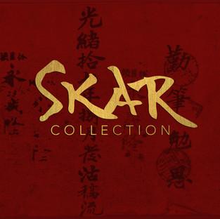 SKAR027b.jpg