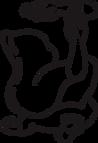Irregular Fit Logo (1) (1).png