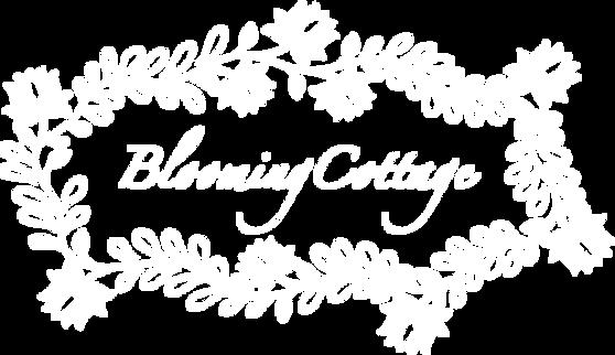 logo_original_white.png