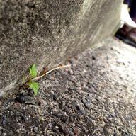 2013_03_26 TNUA Taipei 5.jpg