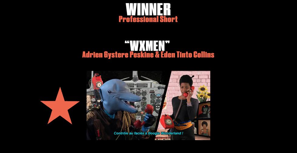 Winner WSFF Slide Best Professional.png