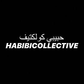 HABIBI LOGO.jpg