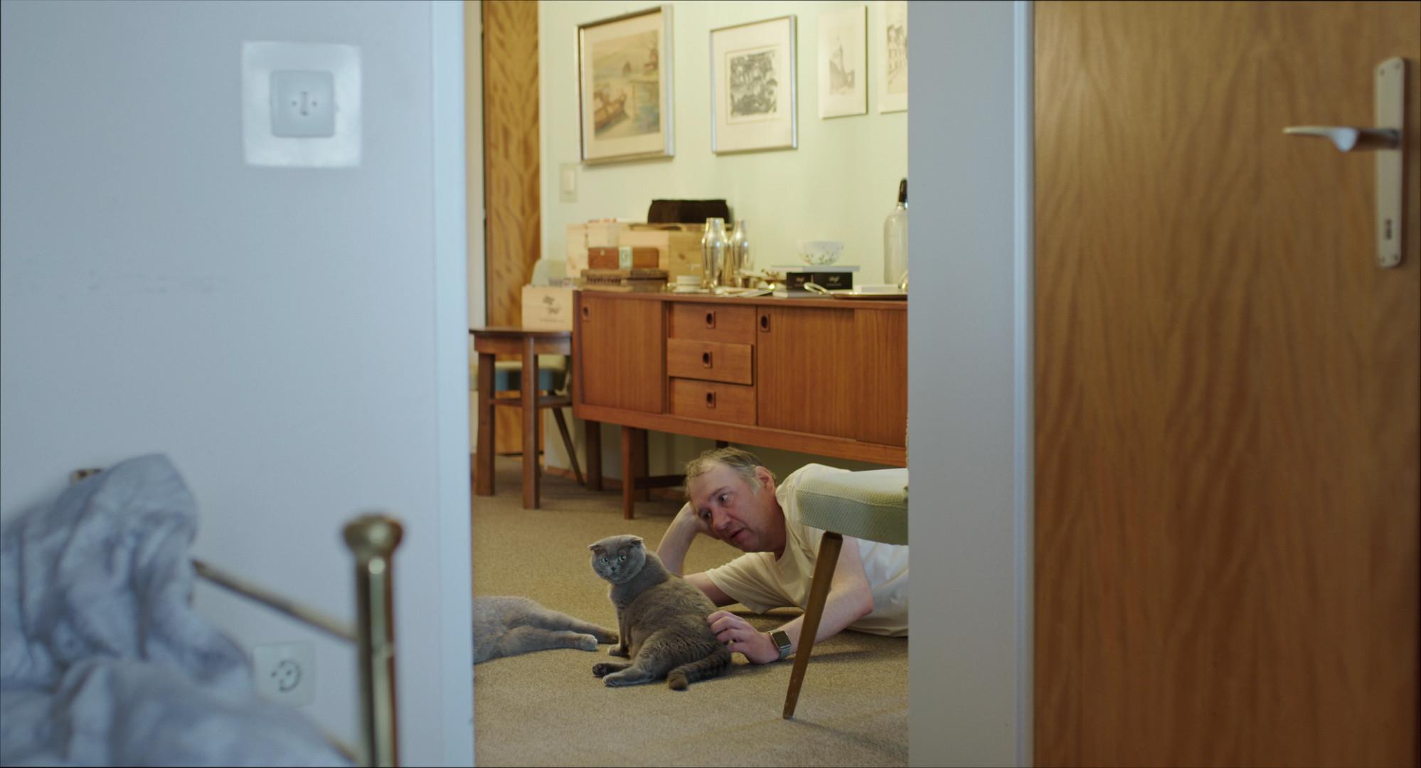 All Cats Are Grey in the Dark - Still 2.