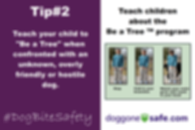 Dog Bite Safety Ten Tips_002.png