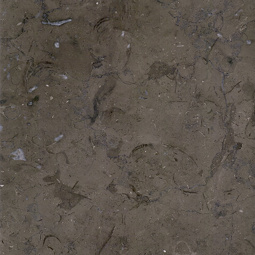 Melly Grey Fossils - Grey Marble - Marble Egypt