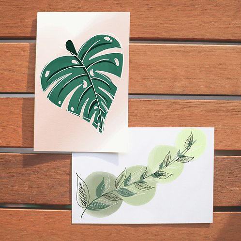 "4"" x 6"" Plant Life Notecards (Single or Set of 10)"