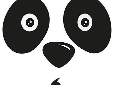 What is Google Panda?