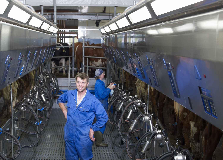 DeLaval Milking Parlour P2100