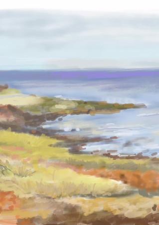 Punta  Colorada . Uruguay