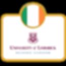 The University of Limerick_Europosgrados