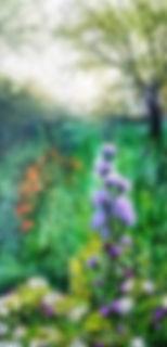 Pollinators Garden 2.jpg