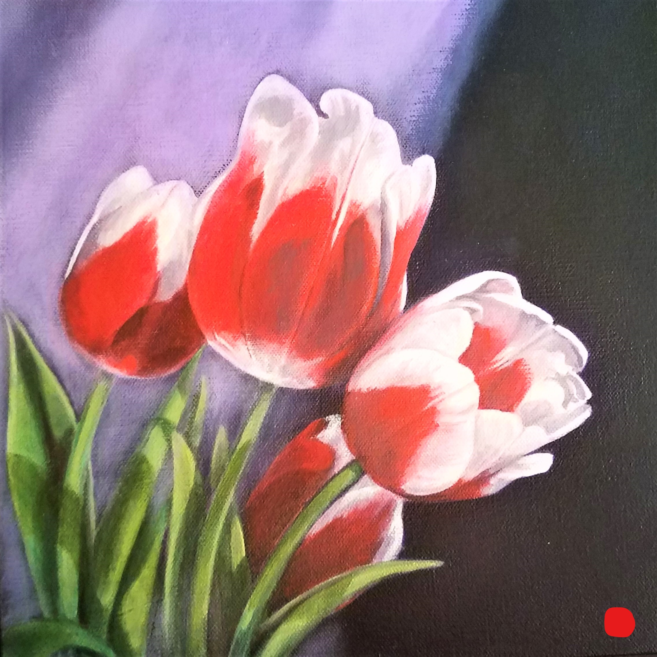 Red and White Tulips 2 of 2 Left_LI