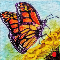 Butterfly_SOLD