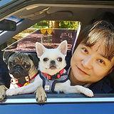 pug mobile_Freya_Blanca.jpg