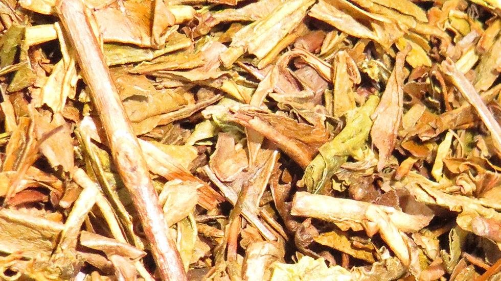 Hojicha, thé vert nature Japonais