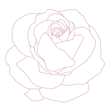 PR_Rose right in silver pink.png