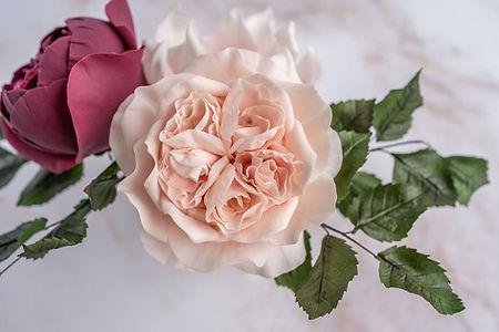 O'Hara sugar rose