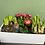 Thumbnail: Bunter Frühling's Spaß Box