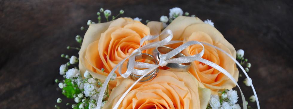 Ringkissen apricott