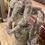 Thumbnail: Moby braun