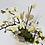 Thumbnail: Orchidee Wild