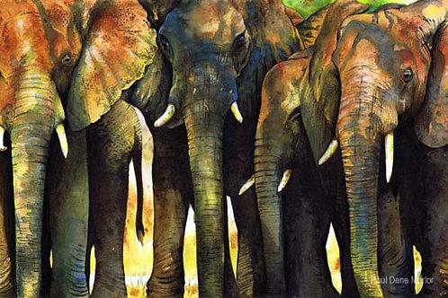 'Elephant Herd' by Paul Dene Marlor