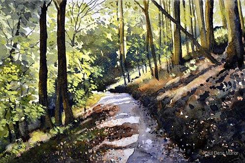 'Strid Wood' by Paul Dene Marlor