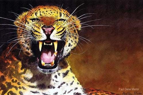 'Leopard' by Paul Dene Marlor