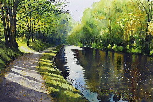 Sunlit canal Sowerby Bridge