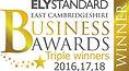 business awards 2018 triple winners.jpg