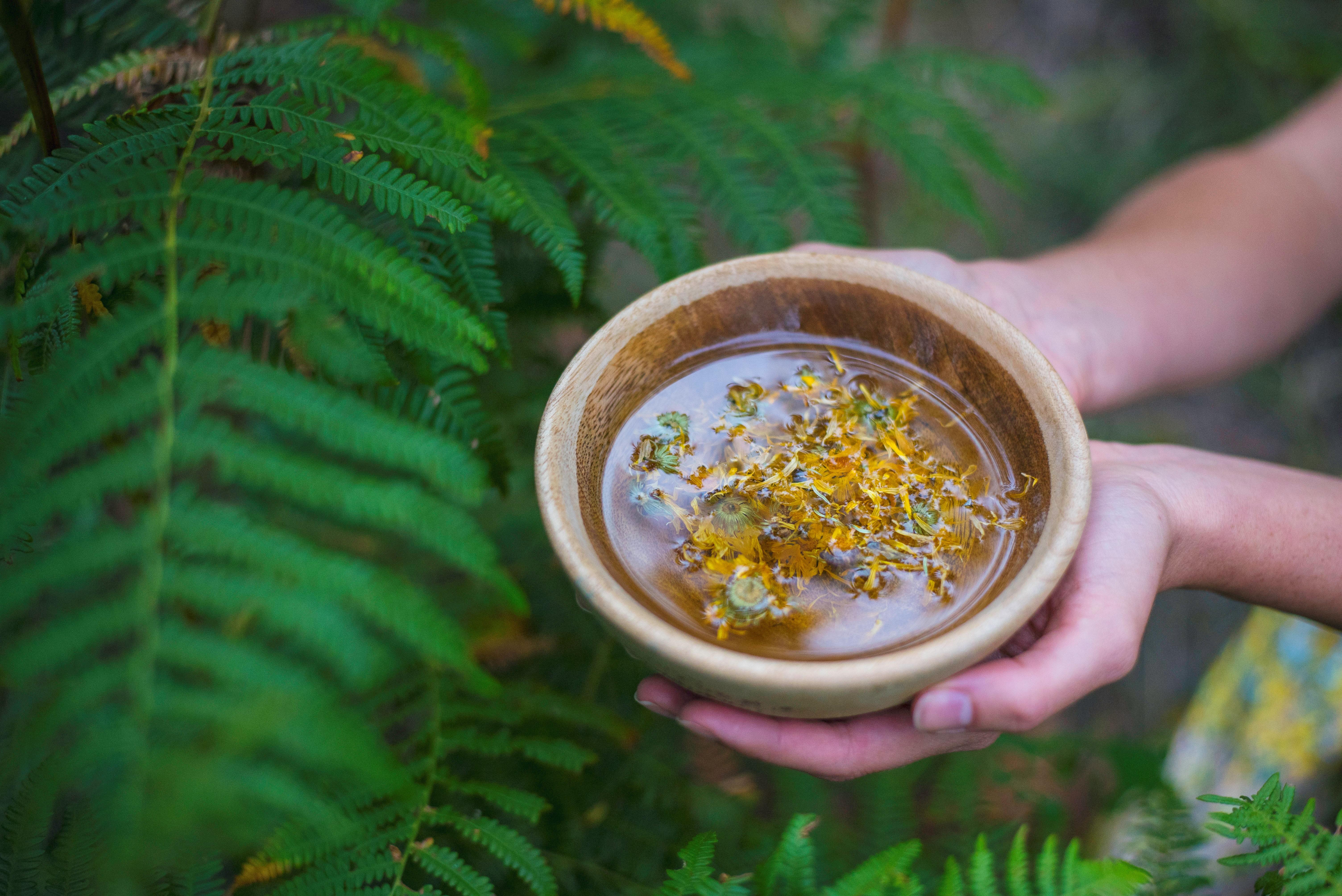 Les Jardins du zen