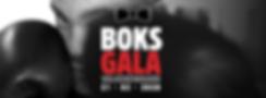 BOKSGALA_HOME_3.png