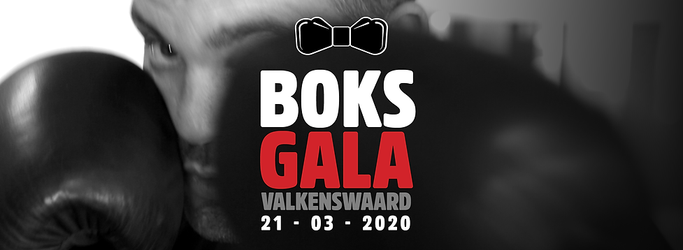 BOKSGALA_HOME_3.png