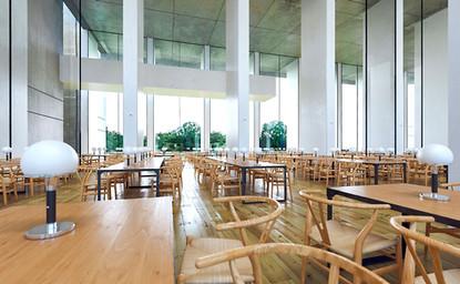 Sunny-interior-library-switzerland