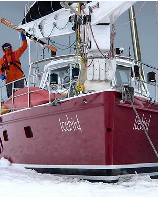 icebird boat.png