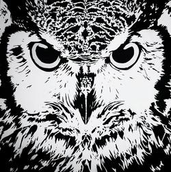 Owl Diamond.jpg