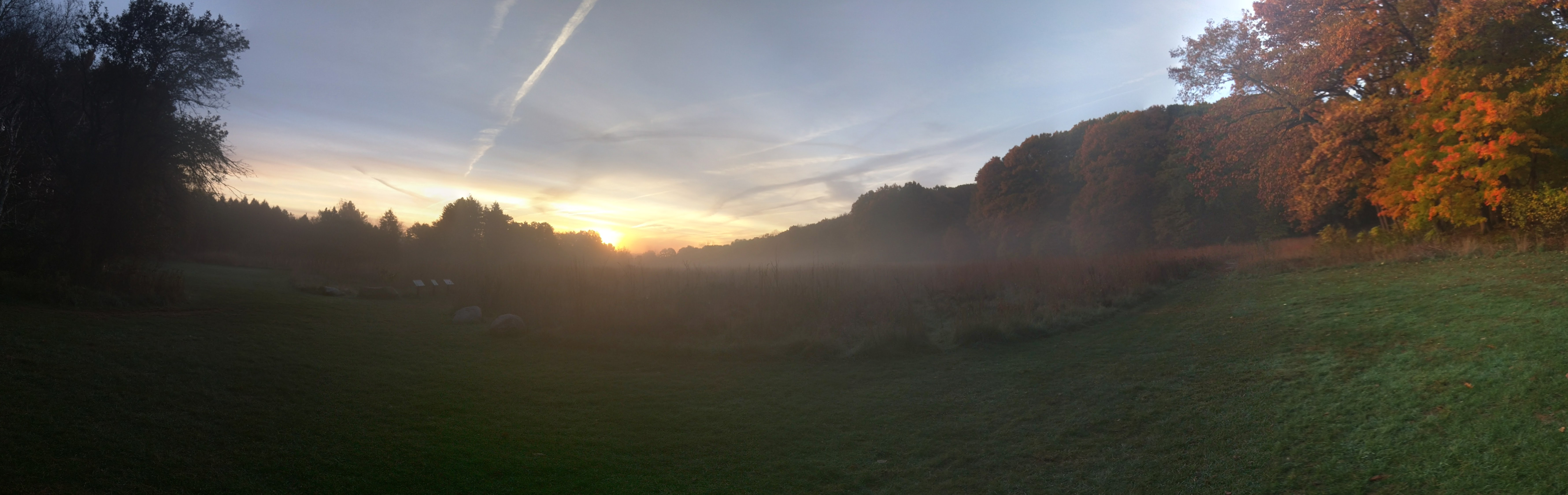 Sun-up at the Arb