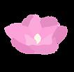 magnolio2.png