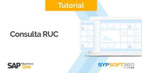 Consulta RUC* en SAP Business One