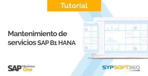 Mantenimiento de Servicios SAP BO y Base de Datos (HANA)