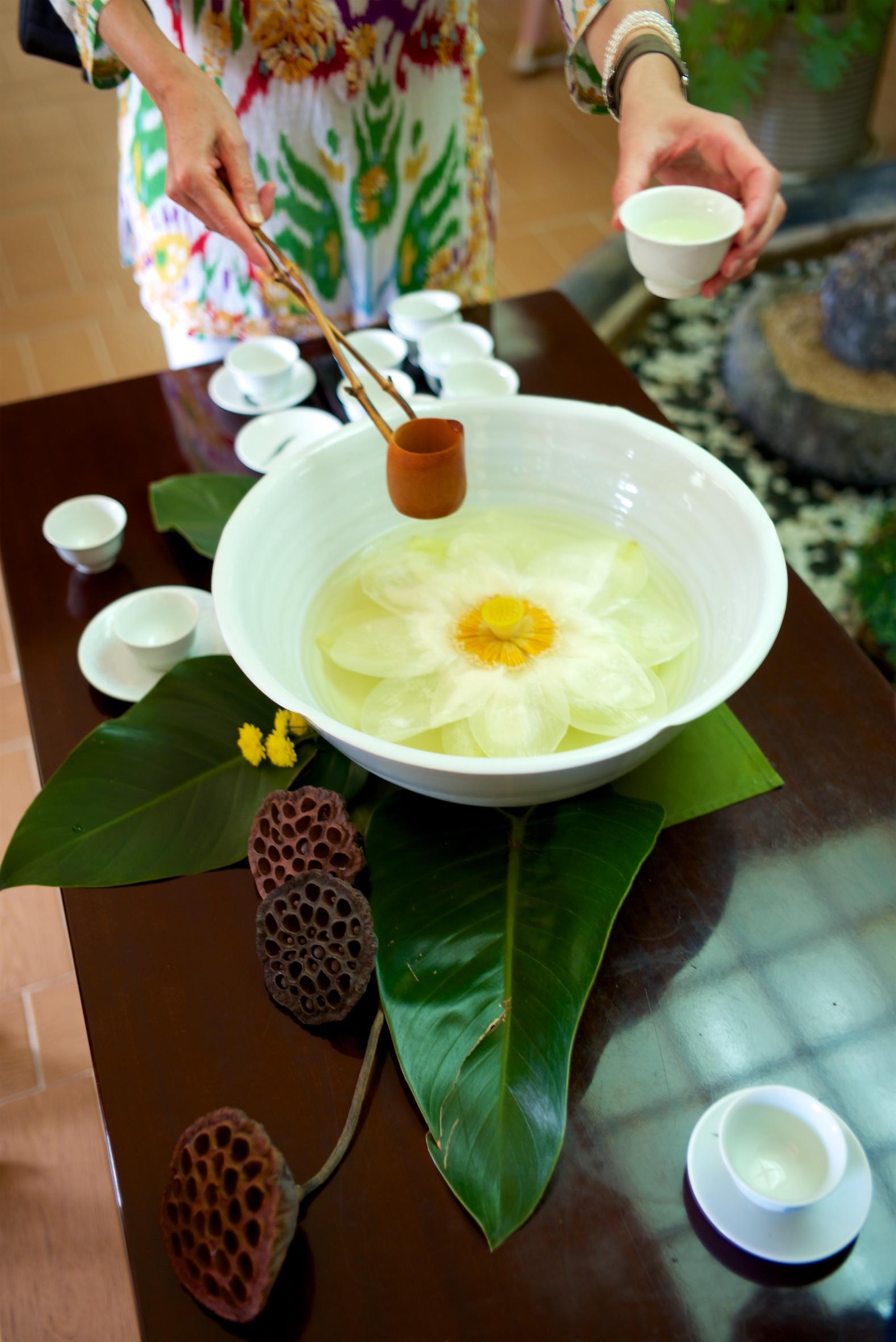 fresh lotus tea