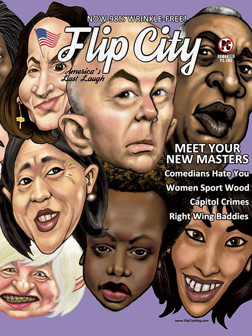 Flip City ISSUE #5 PRINT